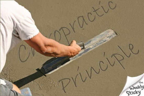 Chiropractic Principle Wet Cement